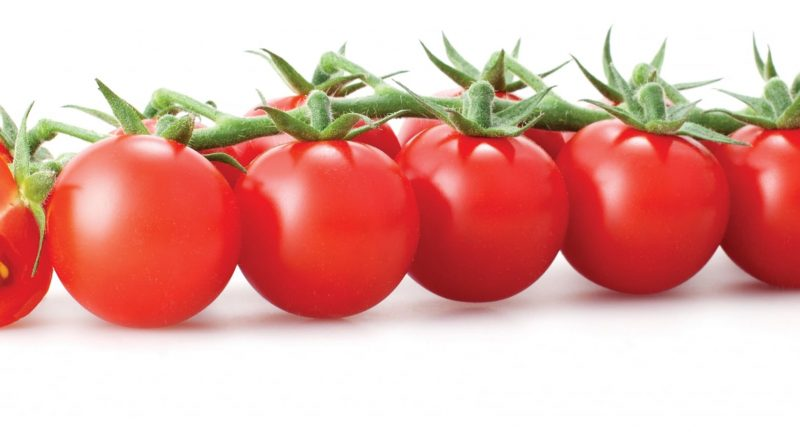 reasons tomatoes included diet