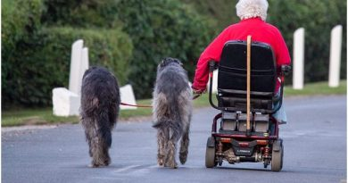 Scooters Seniors