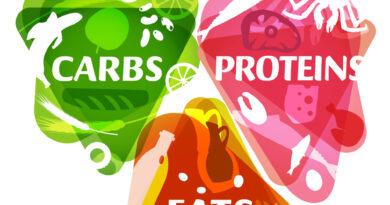 Main food groups - macronutrients