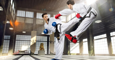 Martial Arts Training Exercises
